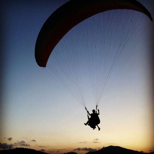 парашютисты идут на посадку