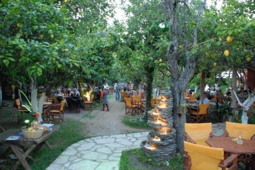 corfu lemon garden
