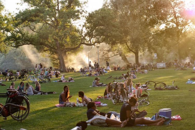 В парке вондела можна заниматься сексом