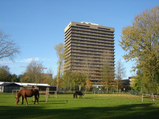 парки амстердама