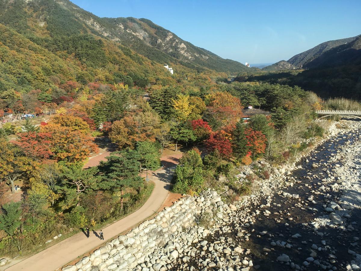 Вид из кабины фуникулера в Seoraksan