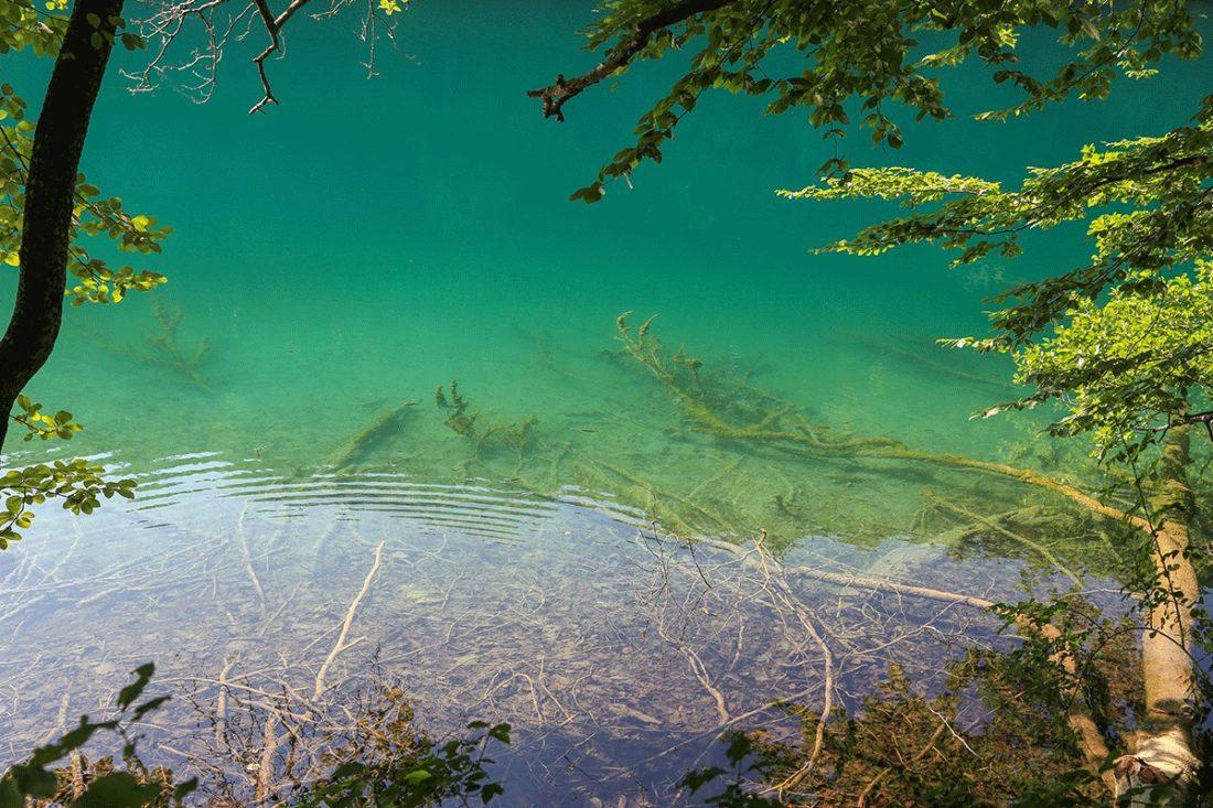Купание на Плитвицких озерах